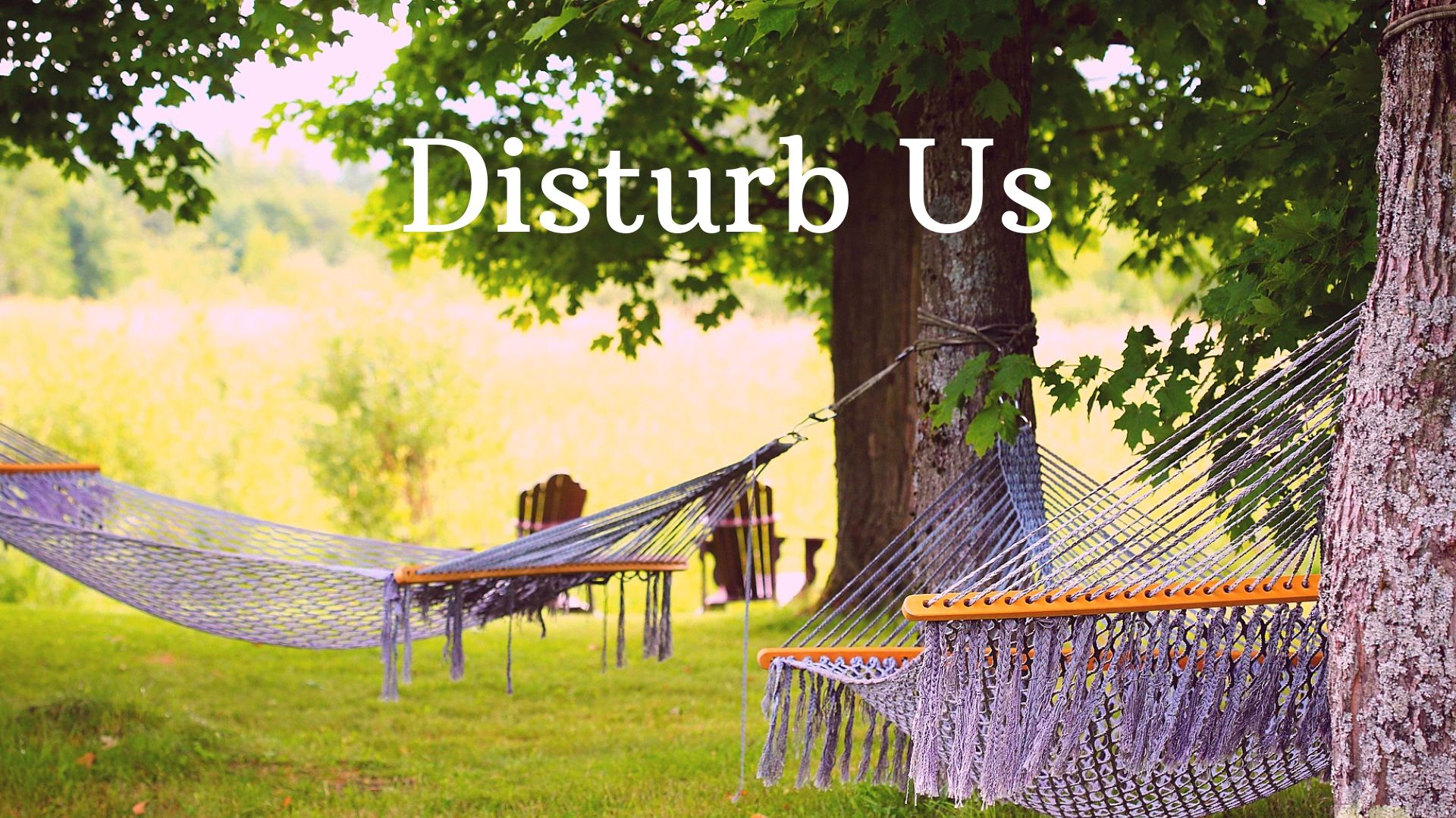 Disturb Us