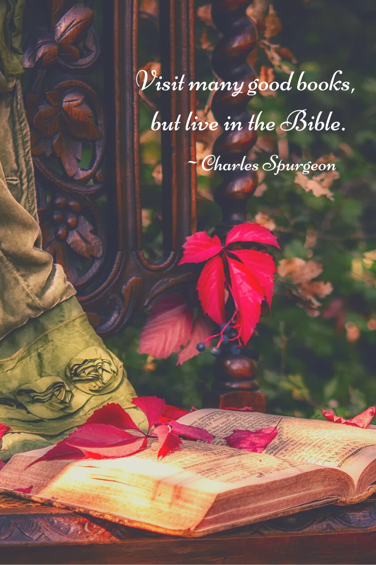 Visit many good books, but live in the Bible.